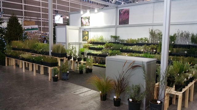 CULTIDELTA : Cultidelta, as other times, exhibits in IBERFLORA (Valencia-Spain)